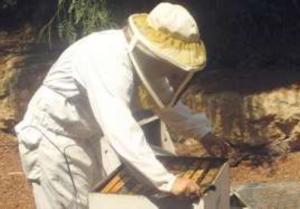 beekeep